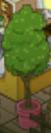 TreeInRoundPotOnPier