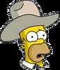 Cowboy Homer Confused Icon