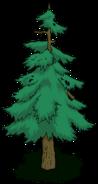 Tree05 transimage