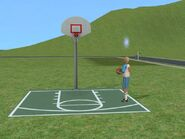 Gordy doing the basketball challenge