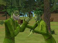 Willow and Bracken