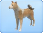 File:Breed-l21.png