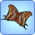 File:Two-Tailed Pasha Butterfly.png