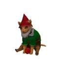 Felix Felinenimus Gnome