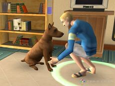 The sims 2 pets 4