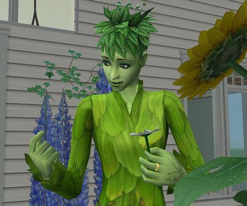 File:Plant3.jpg