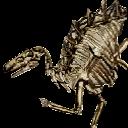 File:Dinopedia ambermos.png