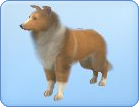 File:Breed-s36.png