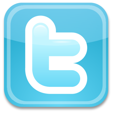 File:Twitter icon logo.png
