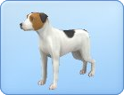 File:Breed-s21.png
