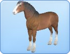 File:Breed-h12.png