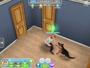 The sims freeplay16