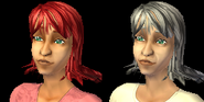 Melissa Sims Adult & Elder