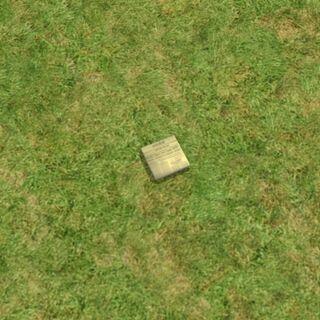 Вид газеты на траве в <i><a href=
