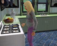 Pregnant Sim 2