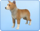 File:Breed-s27.png