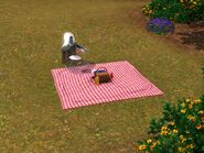 Ghost picnic