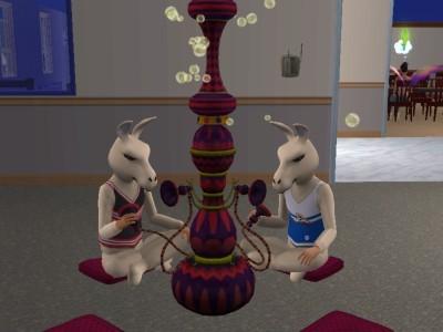 File:Llamas.jpg