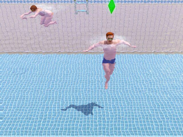 File:AngusSwimming.jpg