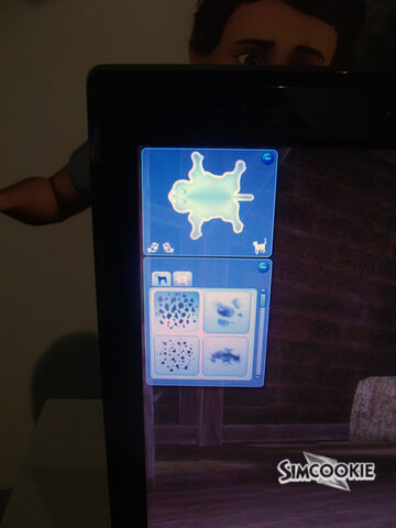 File:Simspets12.jpg