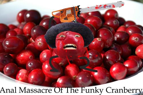 File:Anal Massacre Of The Funky Cranberry cranberries copy.jpg