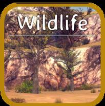 WildlifeHome
