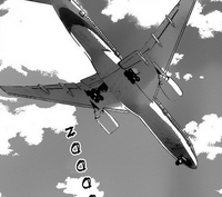 The airplane they took