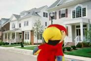 Skippy Shorts Nancy the Parrot