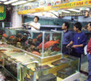 Hong Kong/Underworld/Fish Market