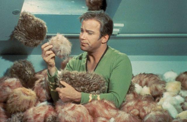 File:Kirk-and-tribbles.jpg