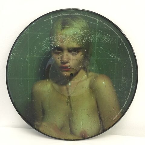 File:NTMT Vinyl Picture Disc 01.jpg