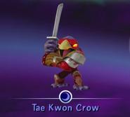 Tae Kwon Crow (2)