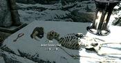 Ancient traveler's skeleton