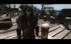 Stormcloak Warrior
