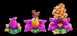 BigBlossoms