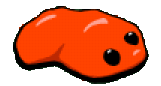 File:NormalRedSlime.png