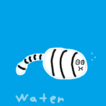 SS Water