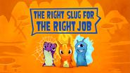 The Right Slug For The Right Job