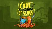 Care And Feeding Of Slugs!