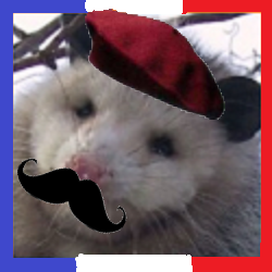 File:Opossum Avatar French.png
