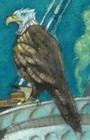 File:V.F.D. Eagle.jpg