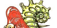 Aqua Slug