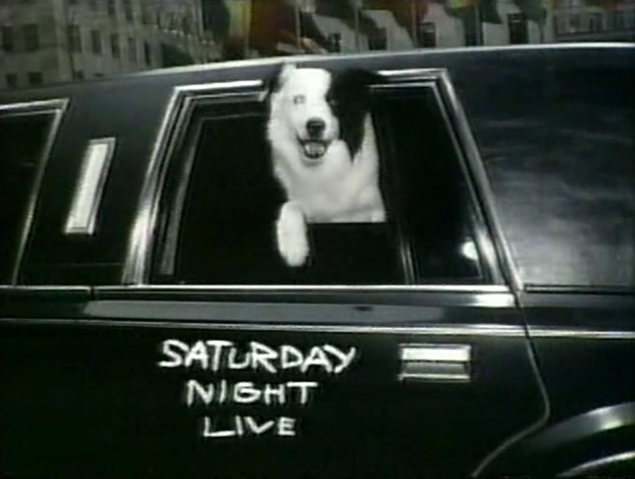 File:Mike the Dog 11.png