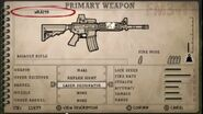 FTB3 M4A1 (2)
