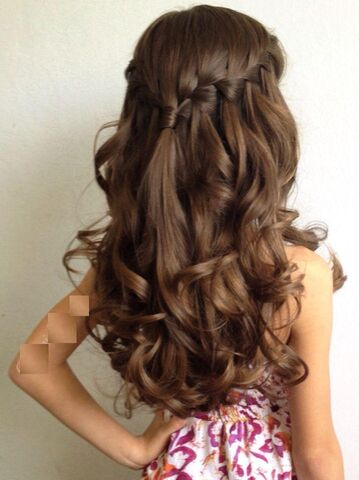 File:French Waterfall Braid.jpg