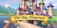 The Big Sleepover