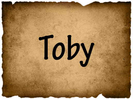 File:TobyVote2.png
