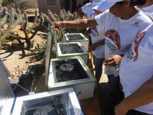 File:Acaatinga 2012jpg.jpg