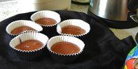 Cupcake Solar Cooker