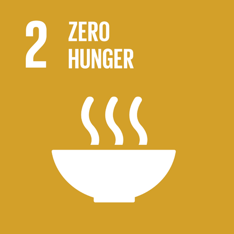 File:E SDG goals icons-individual-rgb-02.png